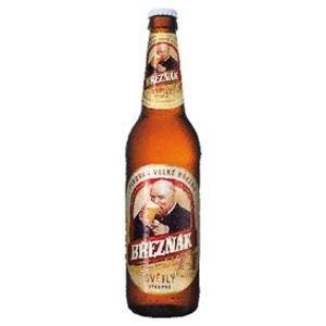 Březňák, světlé výčepní pivo 0,5l