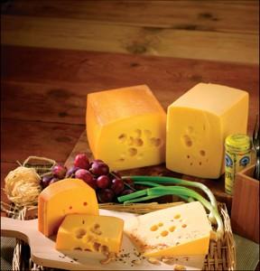 Sýr ementálského typu 45 %