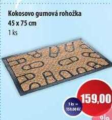 Kokosovo gumová rohožka 45 x 75 cm 1 ks